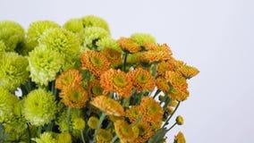 El primer, flores, ramo, rotación en el fondo blanco, composición floral consiste en Santini verde y anaranjado almacen de metraje de vídeo