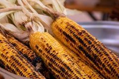 El primer frito asó a la parrilla mazorcas de maíz con el copyspace en fondo foto de archivo