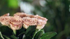 El primer, ramo de la flor en los rayos de la luz, rotación, la composición floral consiste en capuchino de las rosas divino metrajes
