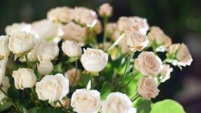 El primer, ramo de la flor en los rayos de la luz, rotación, la composición floral consiste en el yana de las rosas cremoso, divi almacen de video