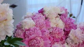 El primer, ramo de la flor en los rayos de la luz, rotación, la composición floral consiste en las rosas rosadas pión-formadas metrajes