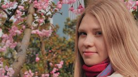 El primer tirado de muchacha atractiva con los flores rosados en el fondo, mujer goza del olor de la flor floreciente de la cerez almacen de metraje de vídeo