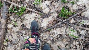 El primer, visión desde arriba, en el bosque de la primavera, entre snowdrops, las piernas masculinas que caminan en las botas, S almacen de metraje de vídeo