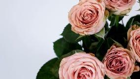 El primer, visión desde arriba, las flores, ramo, rotación, composición floral consiste en capuchino de las rosas Belleza divina almacen de video