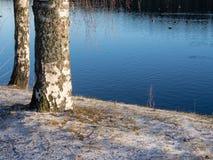 El principio del invierno Imagen de archivo libre de regalías