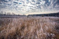 El principio del invierno Foto de archivo libre de regalías