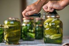 El proceso de cerrar los pepinos salados, preparación para el período del invierno ucrania Imágenes de archivo libres de regalías