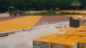El proceso de construcción, reparando la acera Trabajador que pone la piedra que pavimenta en un parque de la ciudad almacen de video