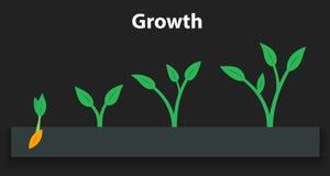 El proceso de crecer las plantas Etapas y cronología infographic de plantar el árbol Fotos de archivo