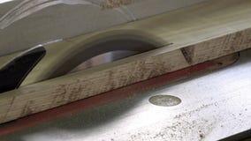 El proceso de los tableros de madera gruesos del corte longitudinal en las máquinas especiales de la carpintería con la ayuda de  almacen de video