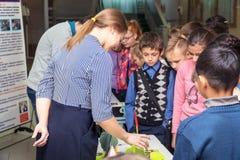 El profesor de la mujer ayuda o muestra algo a los estudiantes foto de archivo libre de regalías
