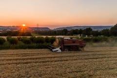 El propósito aéreo de la cosecha de la máquina segadora avena cosecha en la puesta del sol Fotografía de archivo libre de regalías