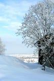 El pueblo en nieve Winter2 Imagen de archivo