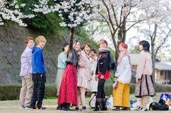 El pueblo japonés joven que mira la cámara en su relaja tiempo en el jardín de la flor de cerezo Fotos de archivo
