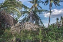 El pueblo Petobo fue perdido a la tierra fotos de archivo