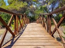 El puente construido con abre una sesión el centro de la interpretación del Albufera de Valencia y la laguna que se puedan visita imagenes de archivo