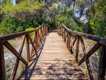 El puente construido con abre una sesión el centro de la interpretación del Albufera de Valencia y la laguna que se puedan visita foto de archivo libre de regalías