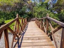 El puente construido con abre una sesión el centro de la interpretación del Albufera de Valencia y la laguna que se puedan visita fotografía de archivo