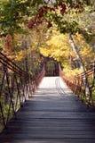 El puente de balanceo Foto de archivo libre de regalías