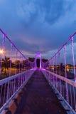 El puente de cuerda del metal en el parque fotografía de archivo libre de regalías