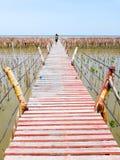El puente de madera construido por la gente a través de pequeño bosque verde del mangle y estirado al mar extenso con el cielo az imágenes de archivo libres de regalías