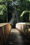 El puente de madera, Kerikeri cae, NZ, Rotorua Fotografía de archivo