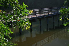 El puente de madera refleja el agua Imágenes de archivo libres de regalías