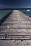 El puente de un árbol en el lago Garda Imagen de archivo