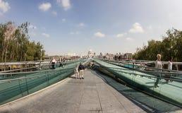 El puente del milenio Foto de archivo