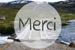 El puente en las montañas de Noruega, medios de Merci le agradece imagen de archivo libre de regalías