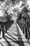 El puente sobre la charca, Tailandia, B&W Foto de archivo