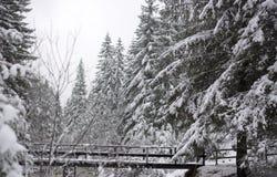 El puente sobre el río congelado Imágenes de archivo libres de regalías