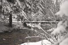 El puente sobre el río en el bosque nevado imágenes de archivo libres de regalías