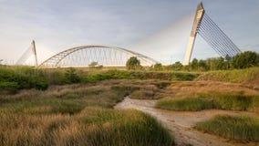 El puente y la hierba Imagen de archivo libre de regalías