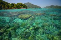 El punto que bucea con el coralscape hermoso en el nacional de Surin equipara Imagenes de archivo