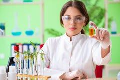 El químico de sexo femenino hermoso del científico de la biotecnología que trabaja en laboratorio foto de archivo libre de regalías