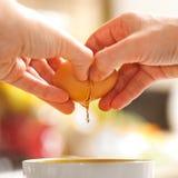 El quebrarse del huevo Imagen de archivo libre de regalías