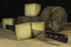 El queso de la leche de ovejas cutted en pedazos con el cuchillo doble-dirigido Imágenes de archivo libres de regalías