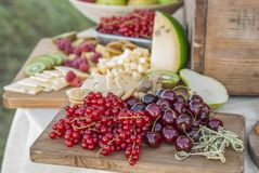 El queso y las frutas en un vintage adornaron maravillosamente la tabla Fotografía de archivo