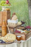 El queso y las frutas en un vintage adornaron maravillosamente la tabla Fotos de archivo