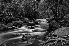El río abajo fluye en blanco y negro Fotos de archivo libres de regalías