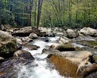El río ahumado del bosque del parque nacional de las montañas de las chimeneas soleado imágenes de archivo libres de regalías