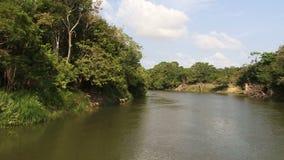 El río Amazonas del frente de un barco almacen de metraje de vídeo