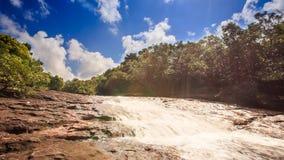 El río bajo de la montaña fluye a lo largo de piedras en bosque tropical almacen de metraje de vídeo
