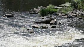 El río cae de la presa almacen de video