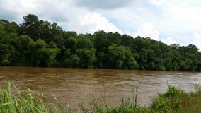 El río Chattahoochee imágenes de archivo libres de regalías