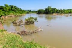 El río Colorado al este de Austin Foto de archivo libre de regalías