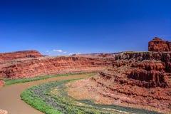 El río Colorado en el parque nacional de Canyonlands, punto del caballo muerto, Moab Utah los E.E.U.U. Imagen de archivo libre de regalías
