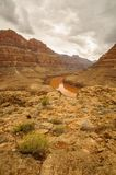 El río Colorado Grand Canyon Fotos de archivo libres de regalías