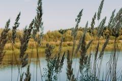 El río con una corriente reservada y las nubes reflejaron en ella, Soz, Gomel, Bielorrusia Imagen de archivo